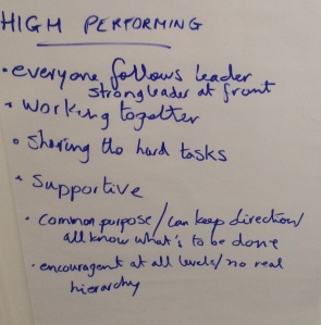 Some of the lessons from geese for high performing teams